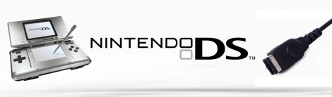 Banner Nintendo DS-Voeding