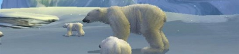 Banner Arctic Tale