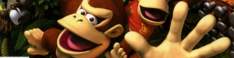 Banner Donkey Kong Jungle Climber