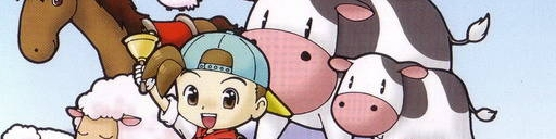 Banner Harvest Moon DS