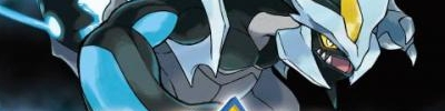 Banner Pokemon Black Version 2