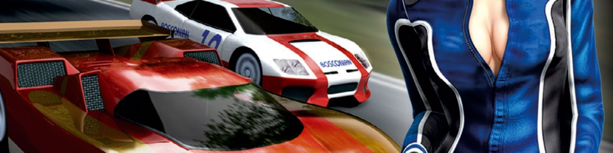 Banner Ridge Racer DS
