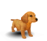 Afbeelding voor Nintendogs Chihuahua and Friends