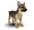 Afbeelding voor Nintendogs Dachshund and Friends