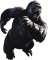 Geheimen en cheats voor Peter Jackson?s King Kong: The Official Game of the Movie