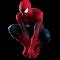Afbeelding voor Spider-Man 2