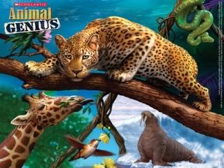 Animal Genius: Afbeelding met speelbare characters