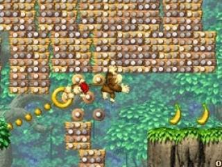 Net als in voorganger King of Swing bestuur je Donkey Kong met de L- en R-knoppen.