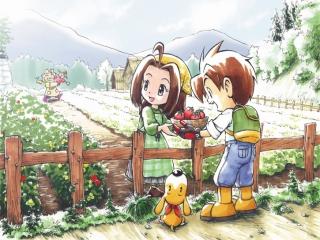 afbeeldingen voor Harvest Moon DS