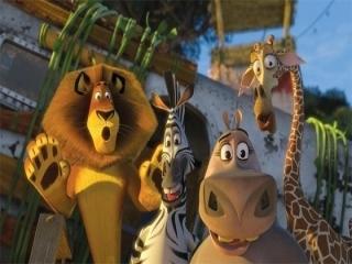 Ga op avontuur met: Alex, Marty, Melman, en Gloria.