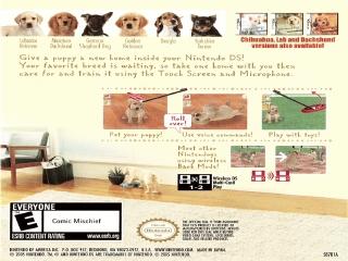 Alle zes de soorten puppies die je kunt opvoeden.
