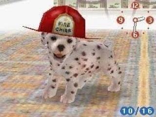Je kunt je huisdieren zelfs grappige outfits laten dragen, of een HEEL serieuze natuurlijk ;)