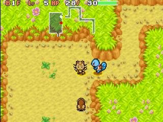Verken de vele kerkers van de pokemon wereld met je trouwe partner aan je zijde.