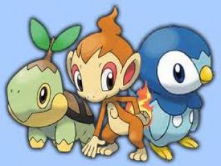 De 3 starter pokemon waar je uit kan kiezen: Turtwig, Chimchar en Piplup.